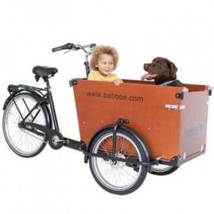 Babboe Dog velo Triporteur
